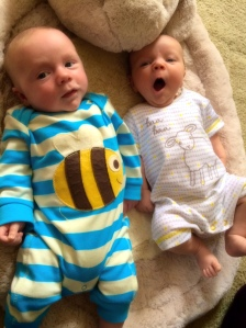 Ted and Wilbur, very best friends: Who says bottle-fed babies don't thrive?